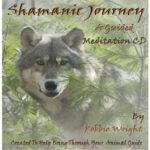 Shamanic Journey Guided Meditation